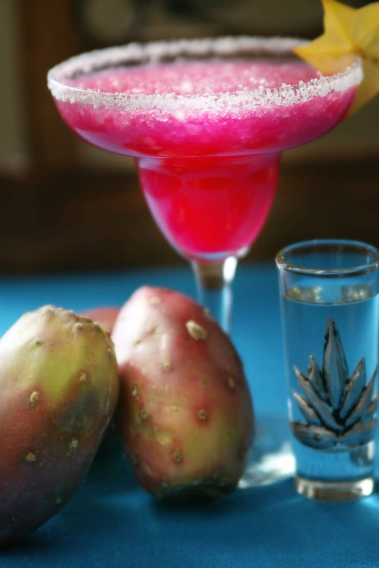 Prickly Pear Frozen Margarita Muy Bueno Cookbook