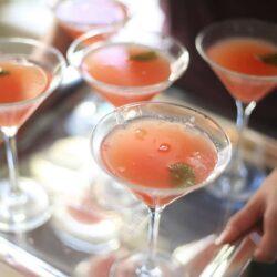 sandia-watermelon-martini