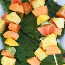 fruit-kabob-skewer-papaya-melow-1