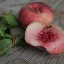 white-doughnut-peach