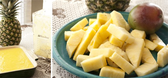 Blendtec-pineapple-mango