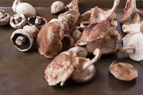 mushrooms-shitake-button