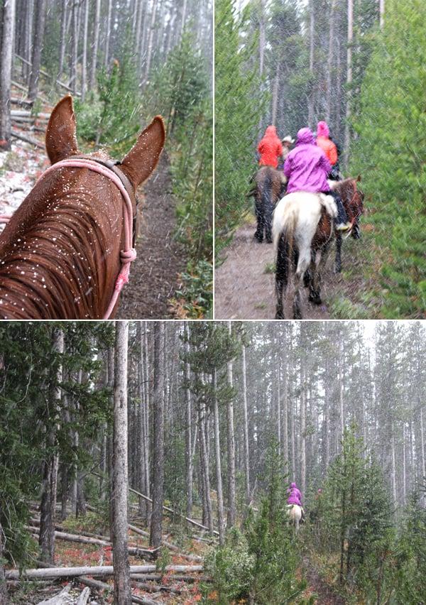 horseback riding snow wyoming