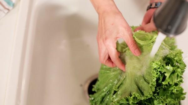 rinse lettuce