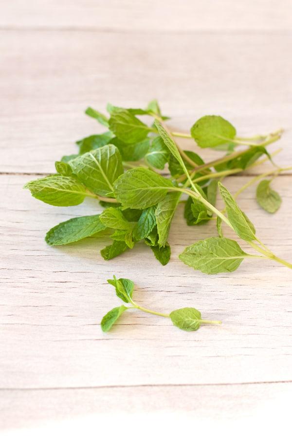 yerba buena mint herbal tea leaves for remedies remedios