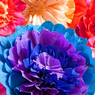 mexican-paper-flowers