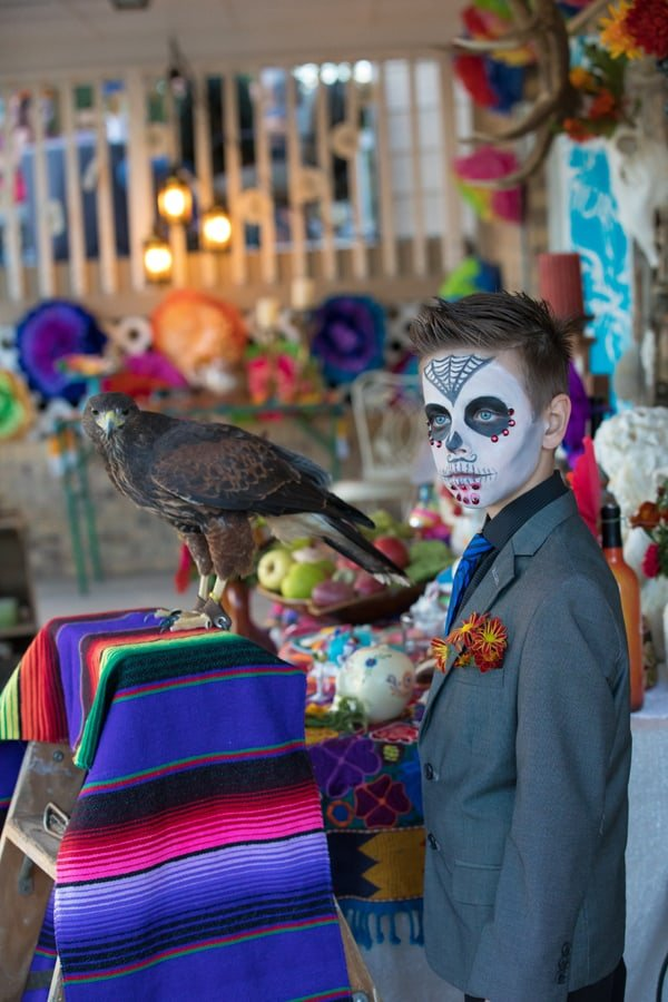 hawk spirit animal Catrina boy day of the dead altar