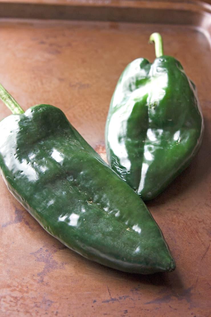 poblano chile pepper