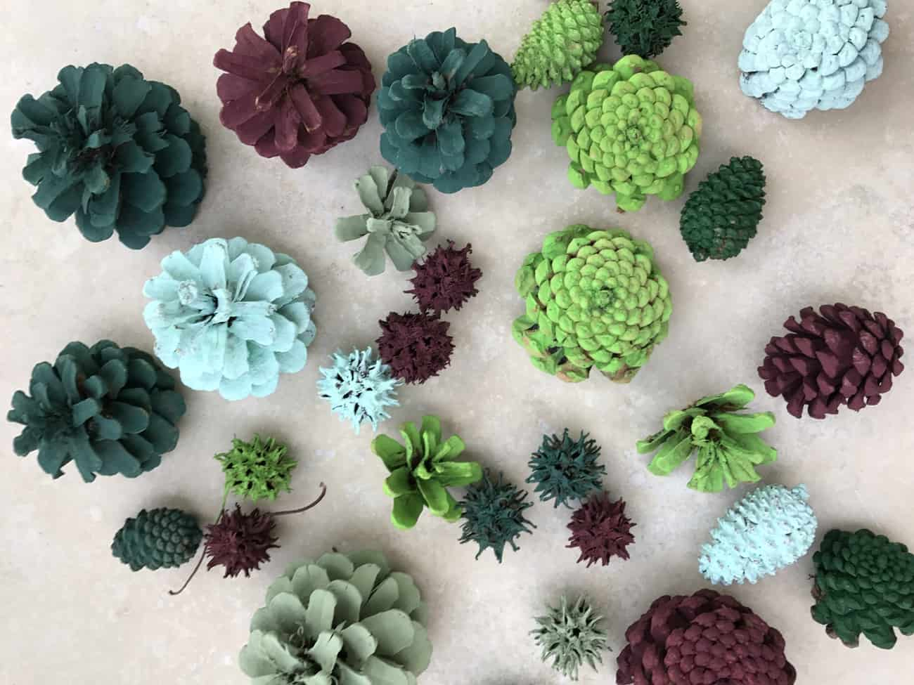 painted pine cones succulents