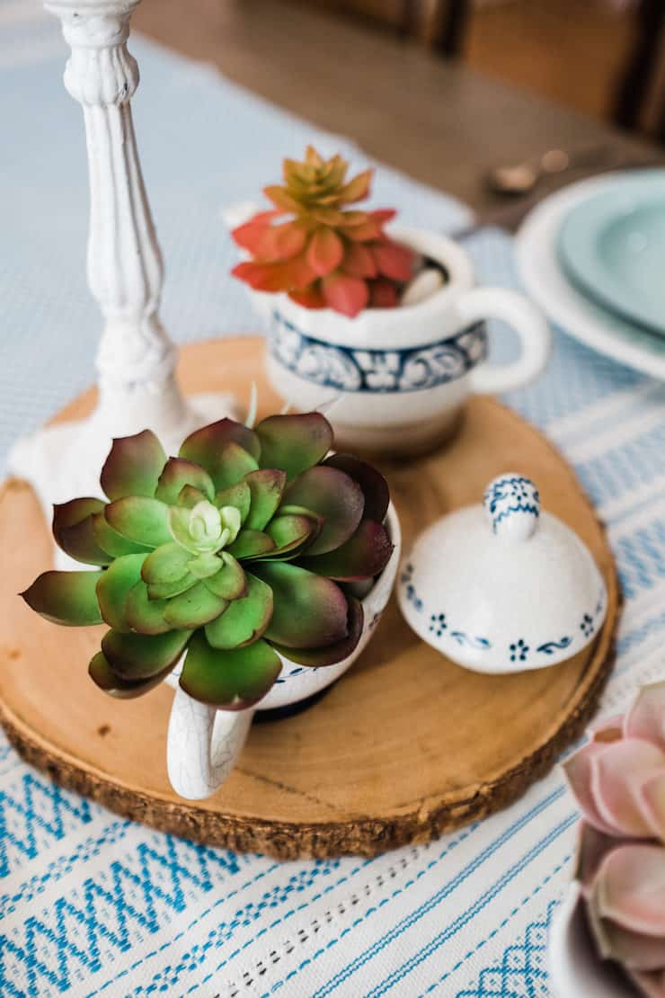 Succulents in Vintage Ceramics