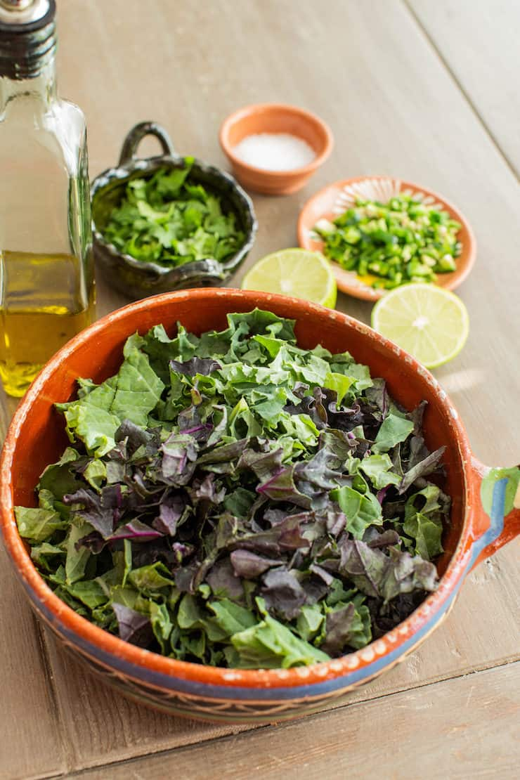 Fresh and healthy organic kale in a Mexican vintage bowl with other ingredients blurred in the background