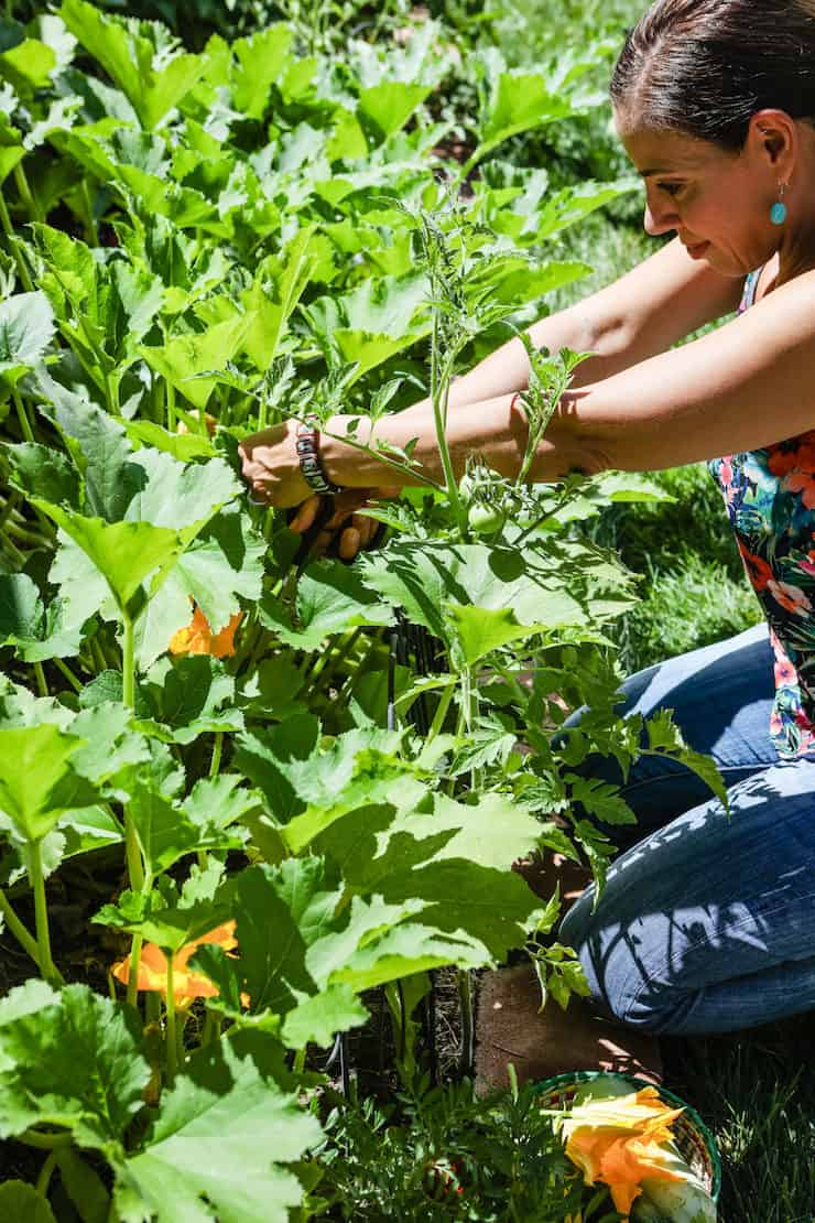 How to Compost at Home Latina food blogger in garden bed with squash blossoms