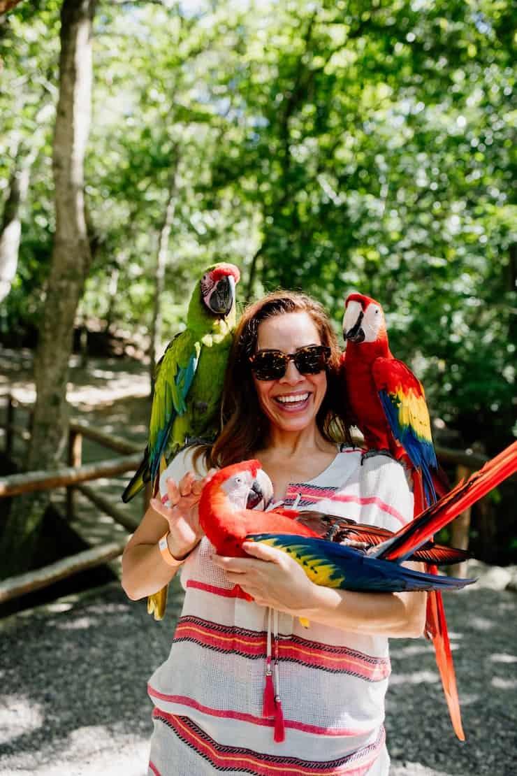 Western Caribbean Cruise Honduras parrots