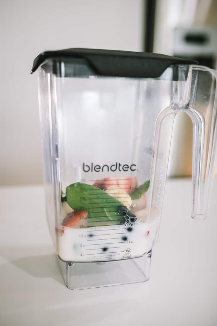 Blendec blender to make Smoothie Freezer Pack Recipes