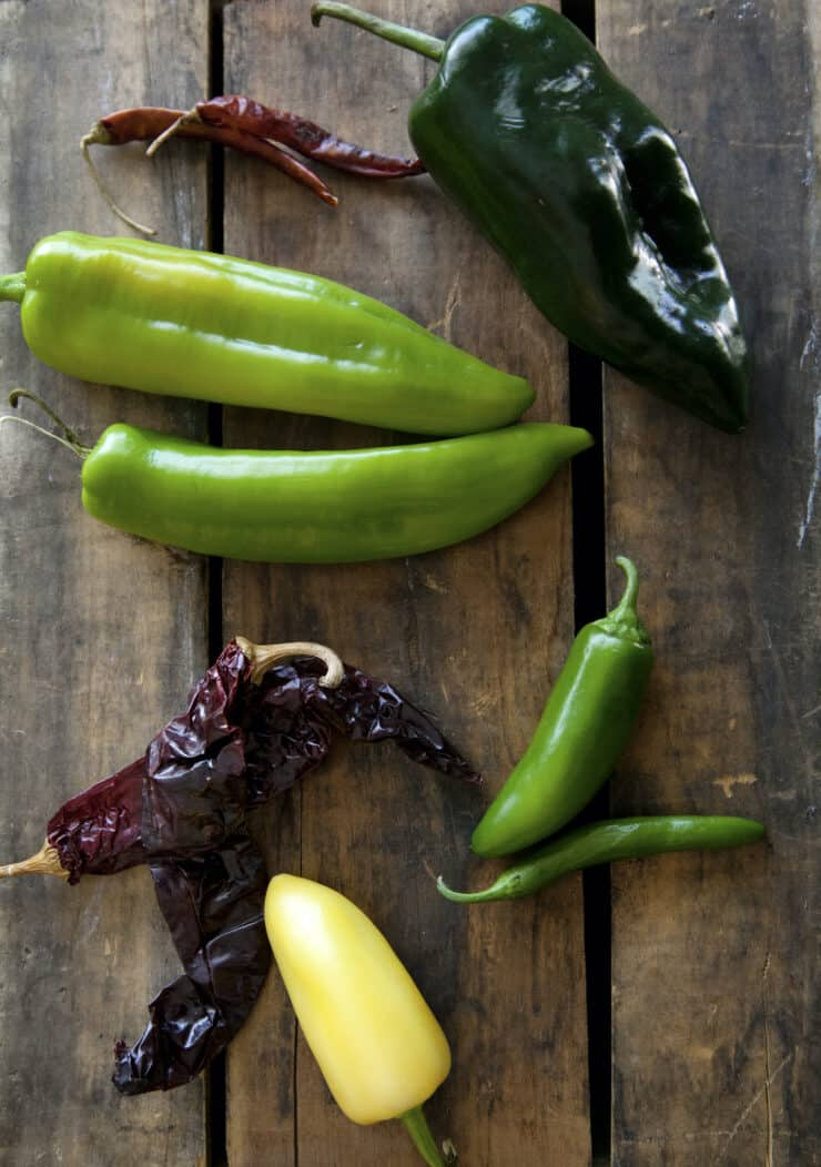 overhead shot of a variety of mexican chiles types (aka chilis)