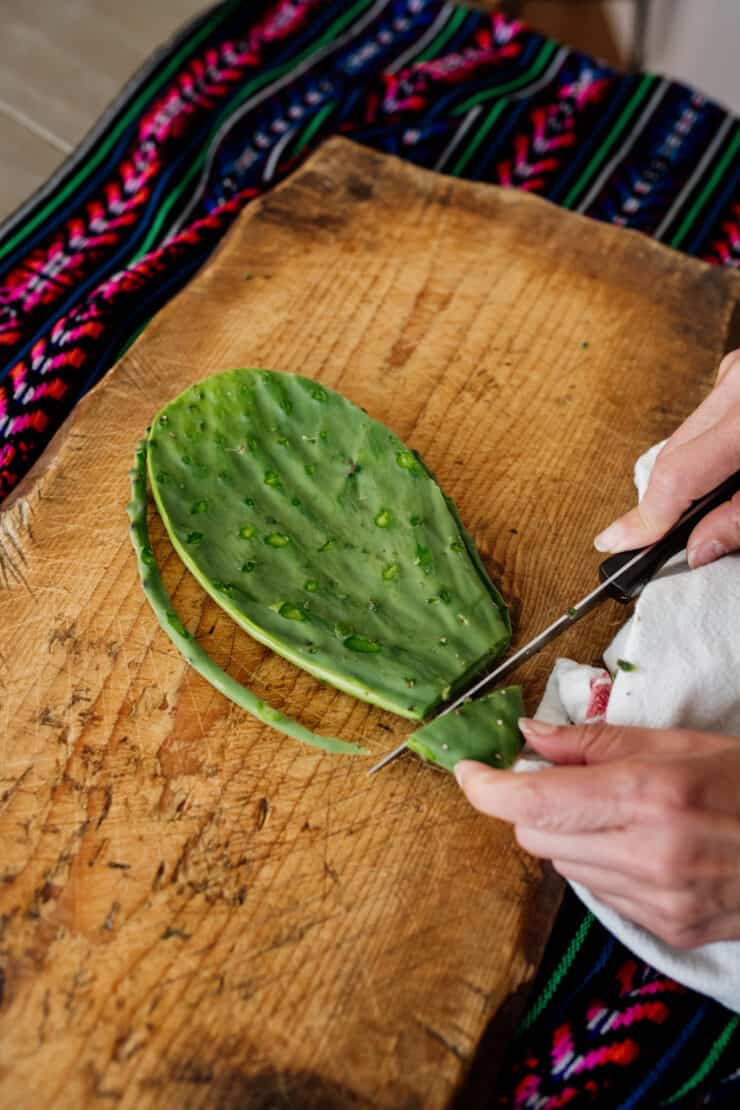 trimming outer edge of a nopal cactus paddle