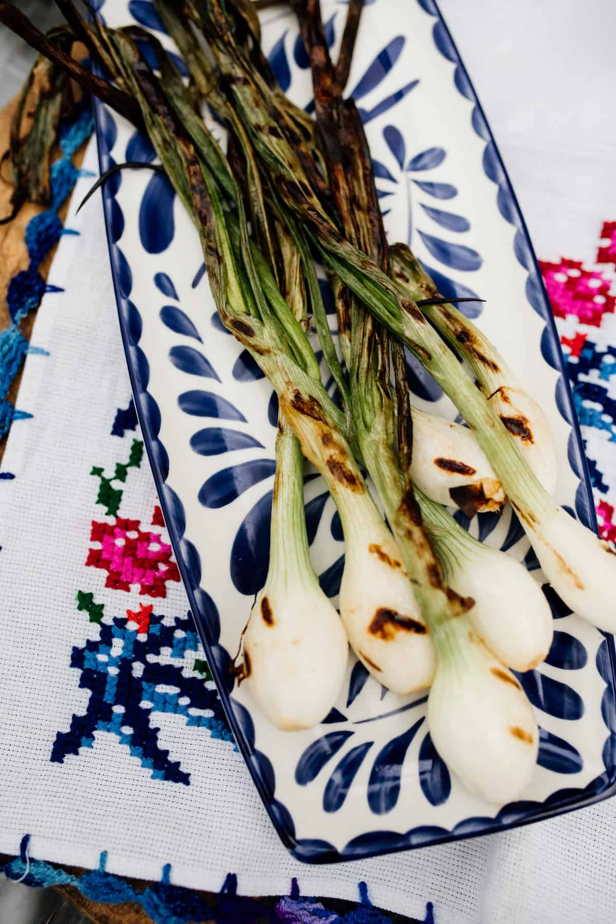 bunch of grilled spring onions (cebollitas asadas) on a painted blue and white plate