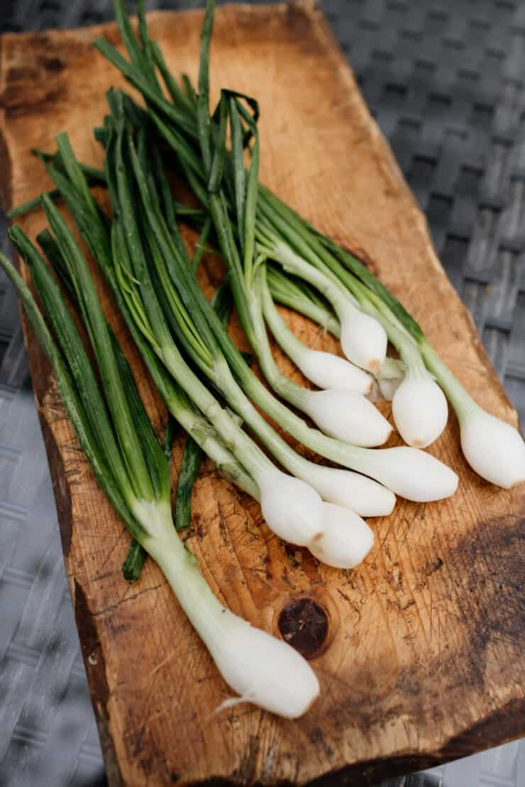 bunch of fresh spring onions on a wooden block